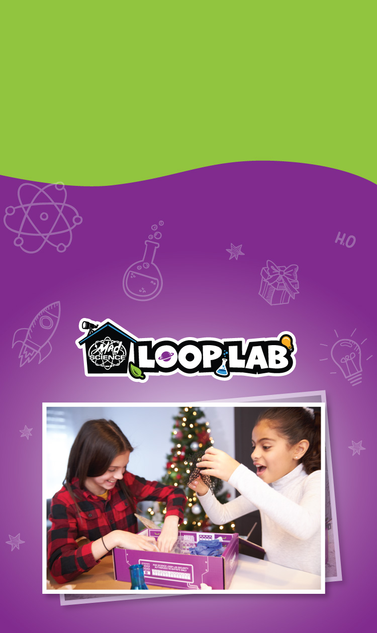 Holiday sale of the loop lab subscription box.